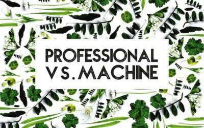 Professional carpet cleaning vs hiring a carpet cleaning machine
