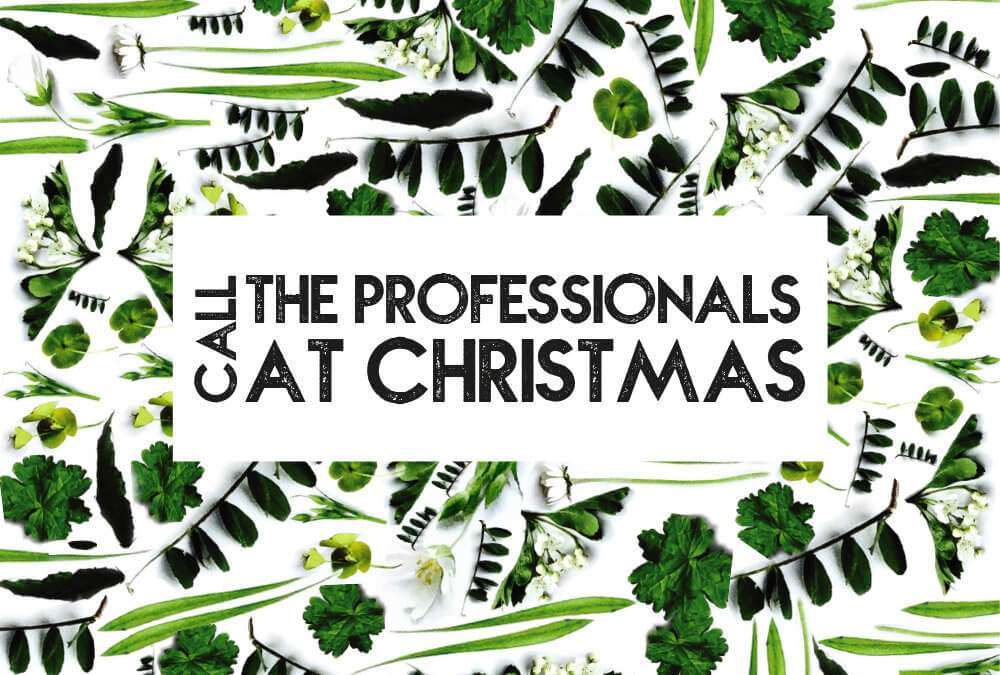 Top 4 Benefits of Calling in the Professionals at Christmas Time!