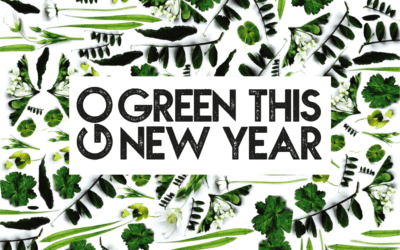 Go green this New Year with an eco-friendly carpet clean!