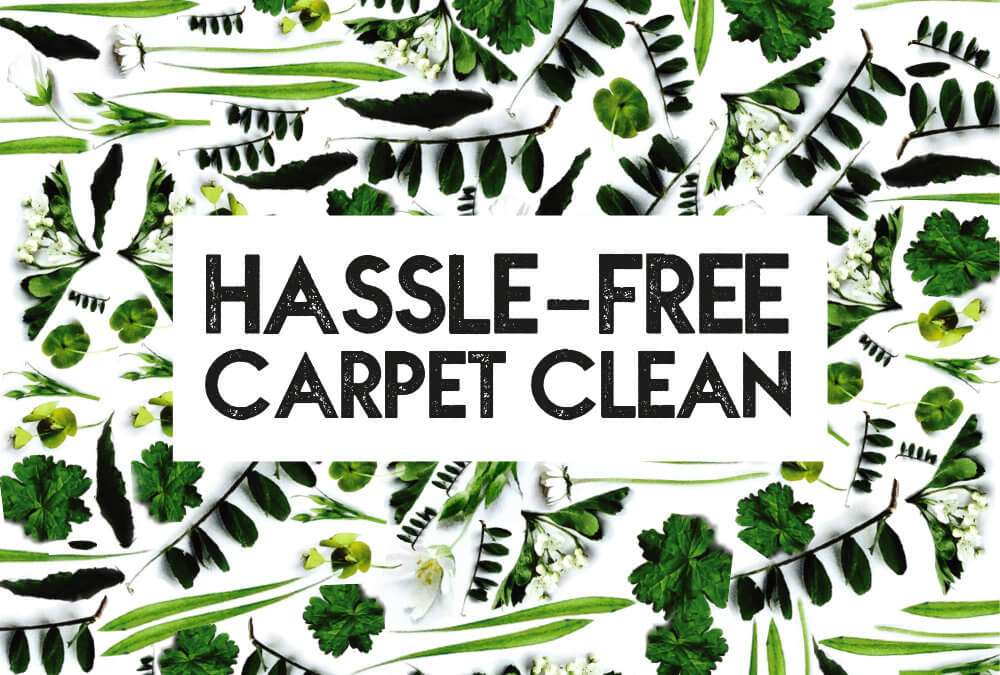 Hassle-free professional carpet clean