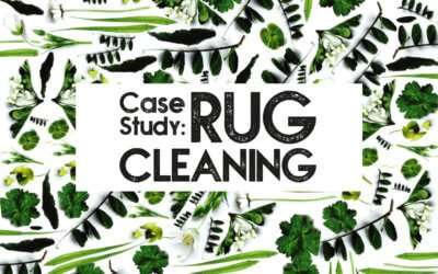 Case Study: Professional Rug Cleaning