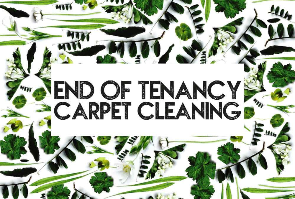 Benefits of a deep carpet clean at end of tenancy