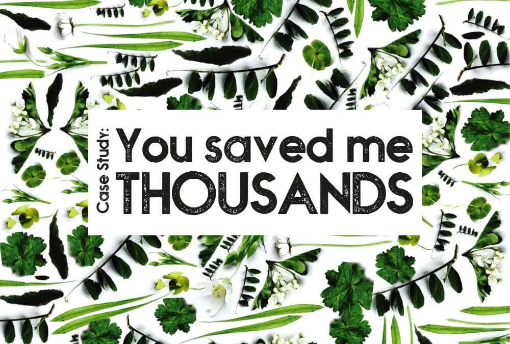 You saved me thousands