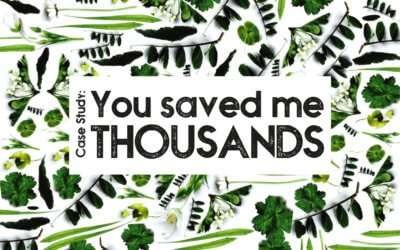 Case Study: 'You Saved Me Thousands'