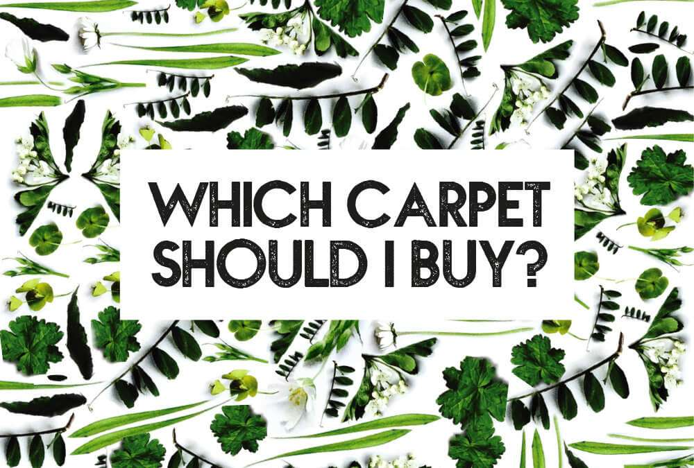 Which carpet should I buy?