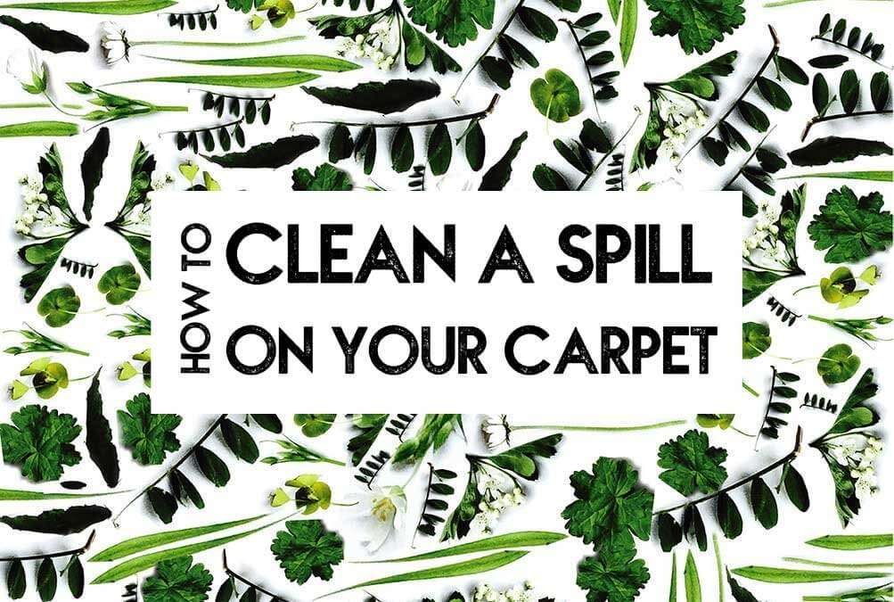 How to clean a spill on your carpet